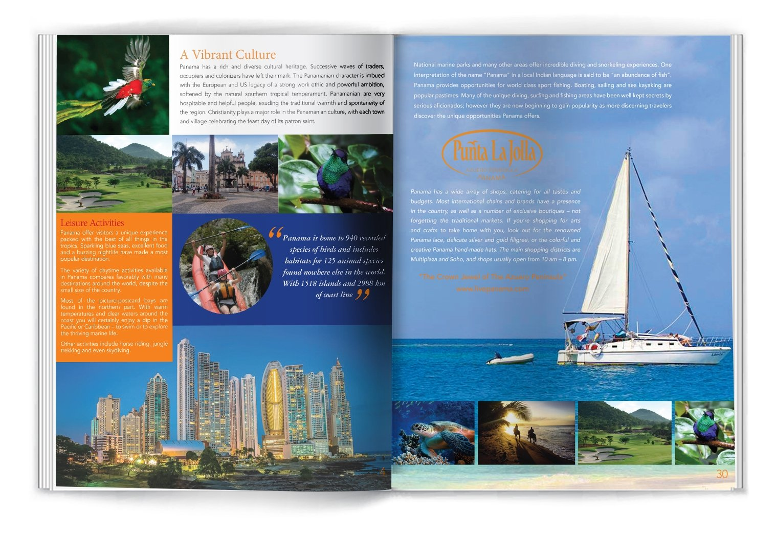 brochure design irvine pl
